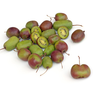 Hardy Kiwi Bundle, Kiwi Berries, Fuzzless Kiwis